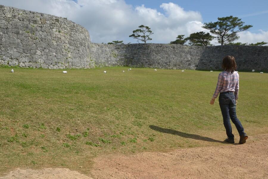 沖縄の城跡巡りと、美ら海水族館